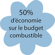 budget combustible.png