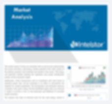 IntelStor™ Market Aanlysis