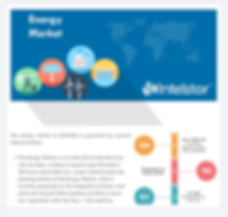 IntelStor™ Energy Market