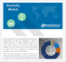 IntelStor™ Electricity Market