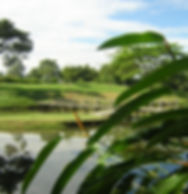 Golf v Kolumbii.jpg