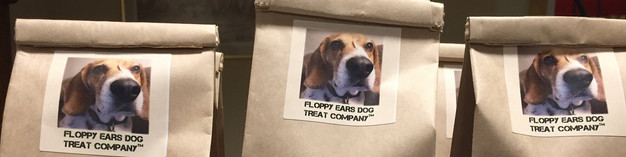 Flights Floppy Ears Fundraising New Life For Paws – Trademark Paralegal