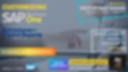 Customizing SAP VW.png