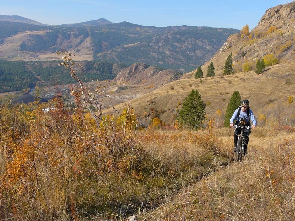 Harpold Trail