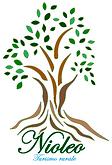 logo_nioleo 3.png