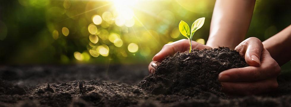 nachhaltigkeits-engagement-report.jpg