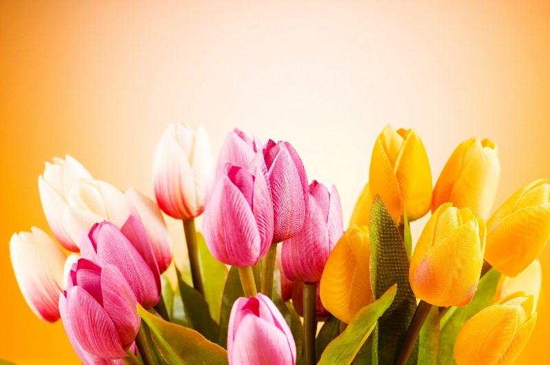 Цветы_118