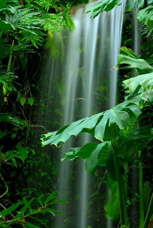 Мир водопадов_096