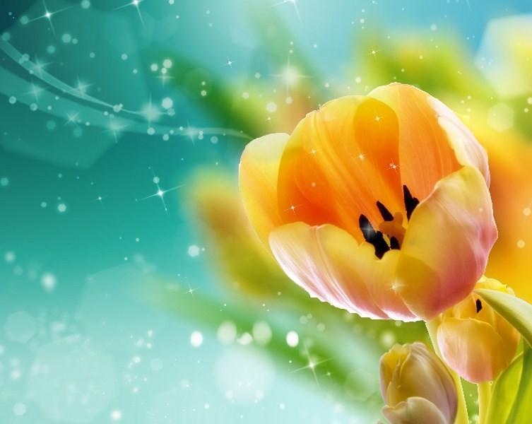 Цветы_262