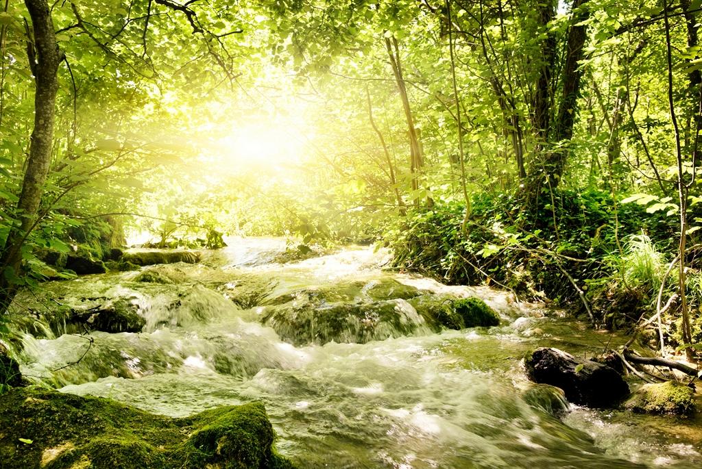 Мир водопадов_093
