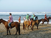 A horseback ride on the beach