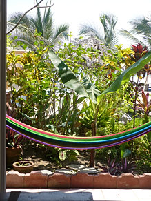 The hammock and garden at Villa 3
