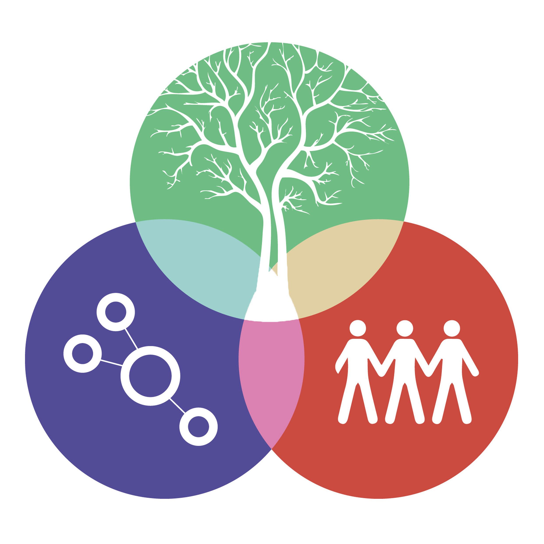 Permaculture et autonomie plus de 50 pdf consciousnews for Rendement permaculture