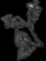 rose%2520part%25201%2520png_edited_edite