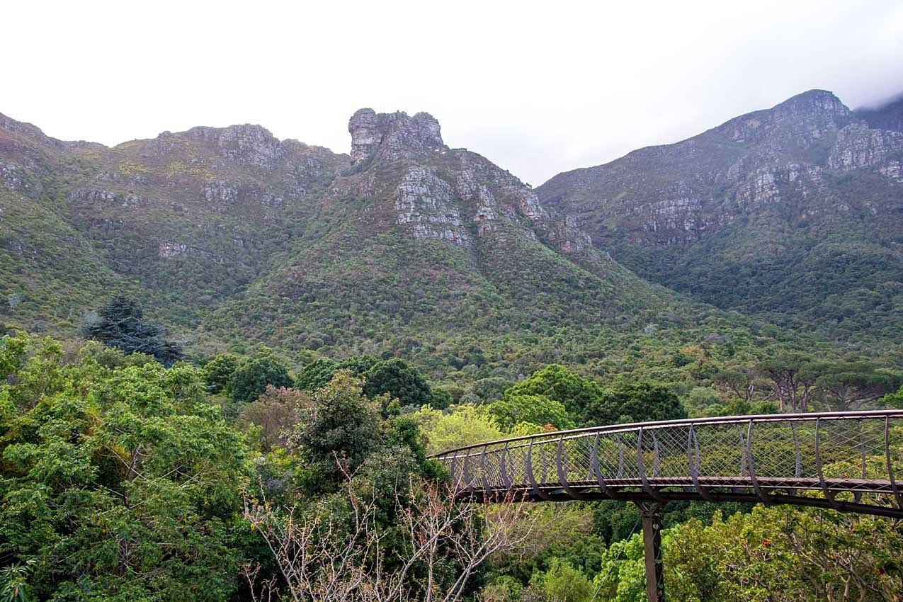 Les carnets de voyage de h l ne et jacky afrique du sud for Boulevard du jardin botanique 20 22