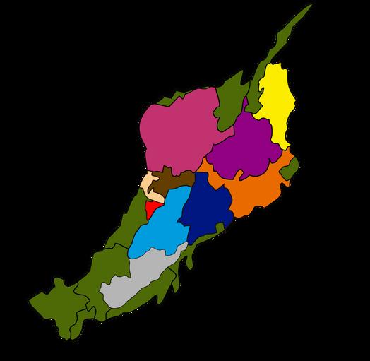 Bandera Region Andina Colombia
