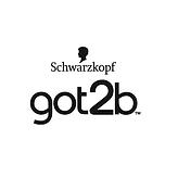 got2b-us-logo.png