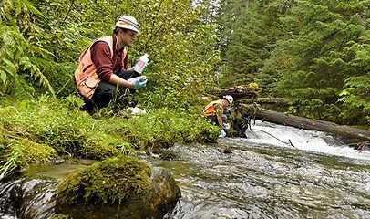 Alaska-Mining-economic-benefits-21-kensi