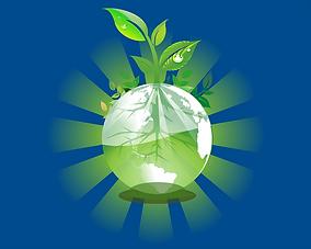 EnvironmentAwardSmall.png