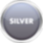 Silver Button.png