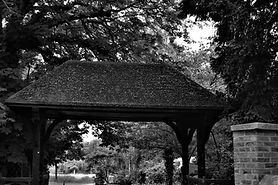 Brent lodge park.jpg