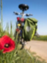cycling-5178398_1920_edited.jpg