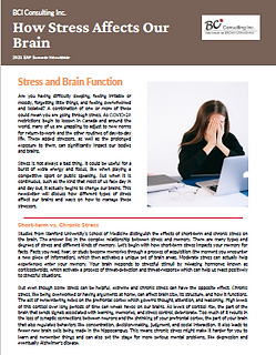 How Stress Affects Our Brain.PNG