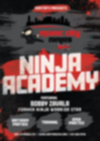 Ninja Flyer 2019.jpg