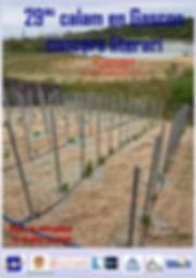 Affiche Calam gascon 2020.jpg