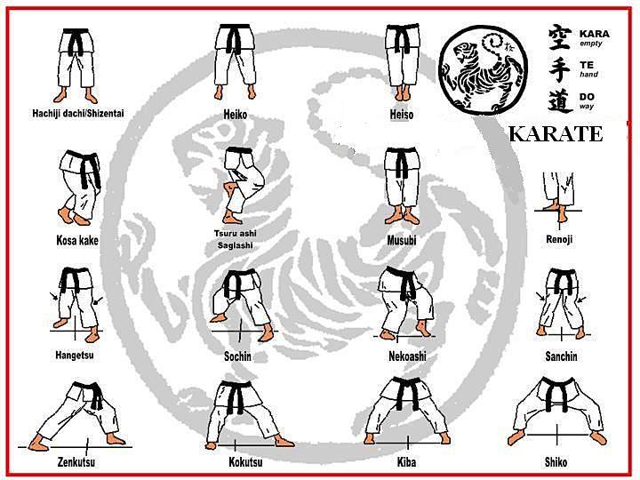 Stances in Karate Shotokan The Karate Stances is Best