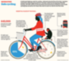Cycle-safety-beugism.png
