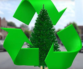 Christmas Tree Recycling | Town of Wheatland New York