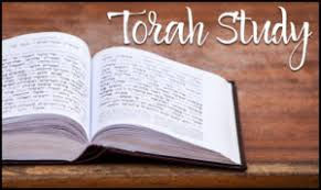 Torah Study.jpeg