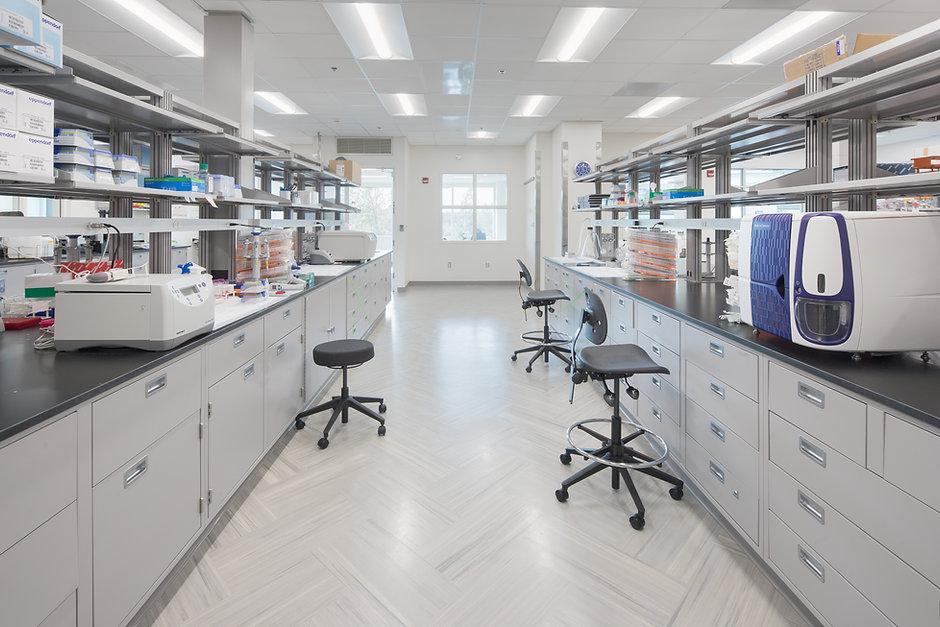 shattuck lab 02.jpg