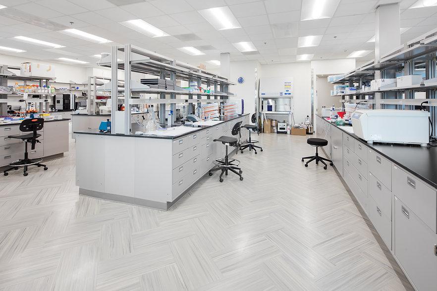 shattuck lab 01.jpg