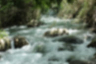 מסלולי הליכה בנחל החצבאני