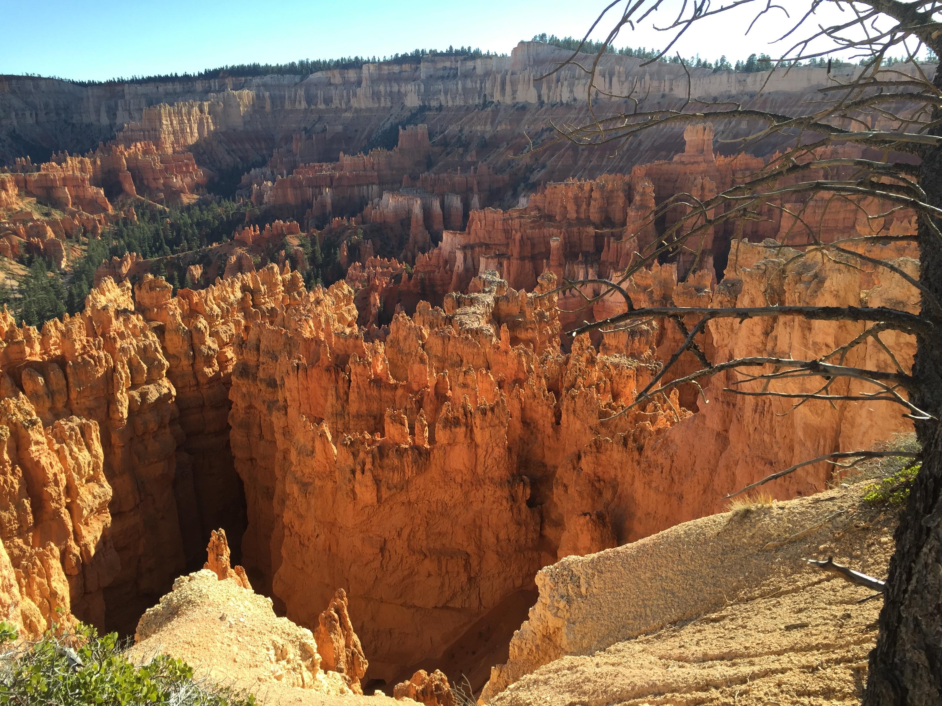 Utah Parque Nacional De Zion
