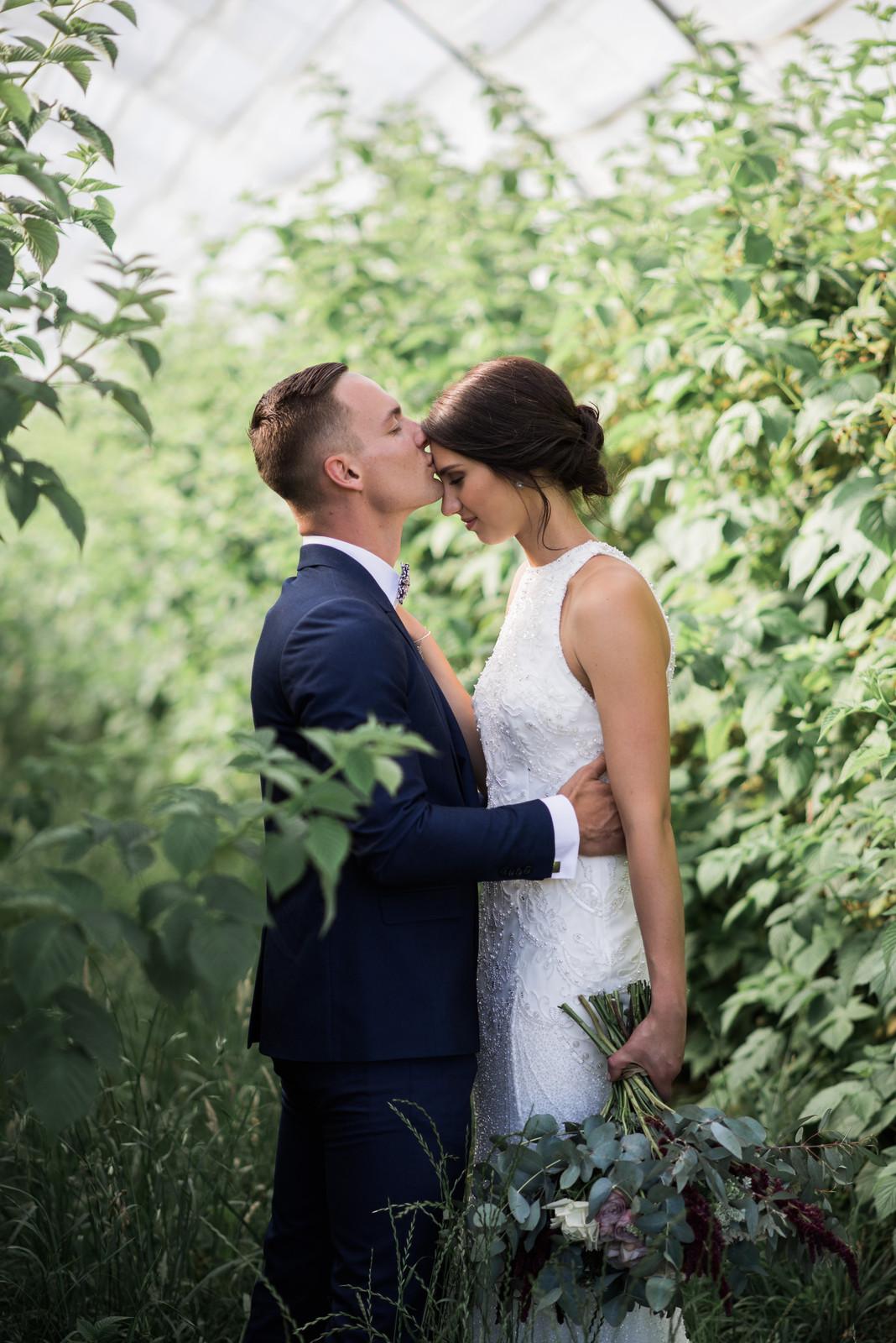 Wedding photographers launceston tasmania 2017