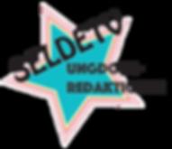 ungdoms_logo.png