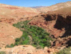 Maroko20.jpg