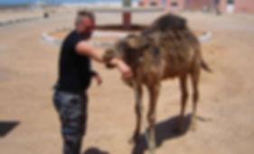Maroko64.jpg