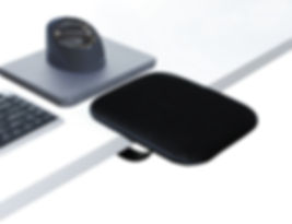 Handy mouse raised noblue.JPG