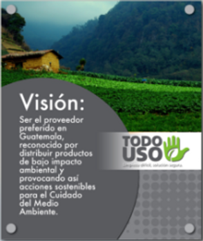 Vision-e1465279870178.png