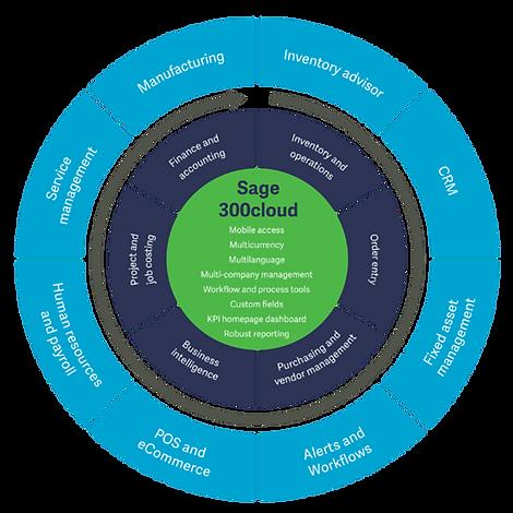 Sage300cloud-chart.png