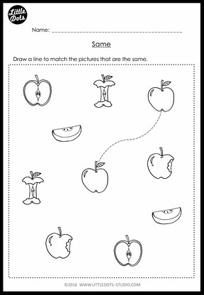 Pre-K Same and Different Worksheets and Activities | Little Dots ...