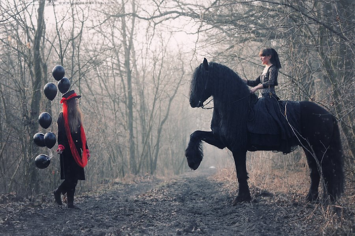 Friesian In Woods.png