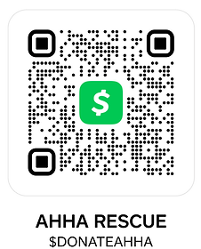 cashapp scan (3).png