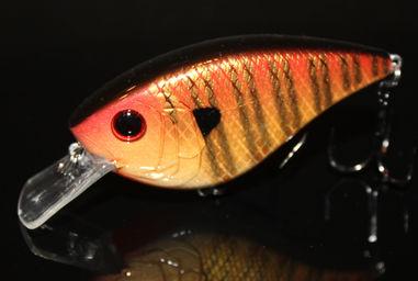 75X - Ballistic Sunfish.jpg