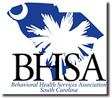bhsa_new_logo_clean_300_sd.png