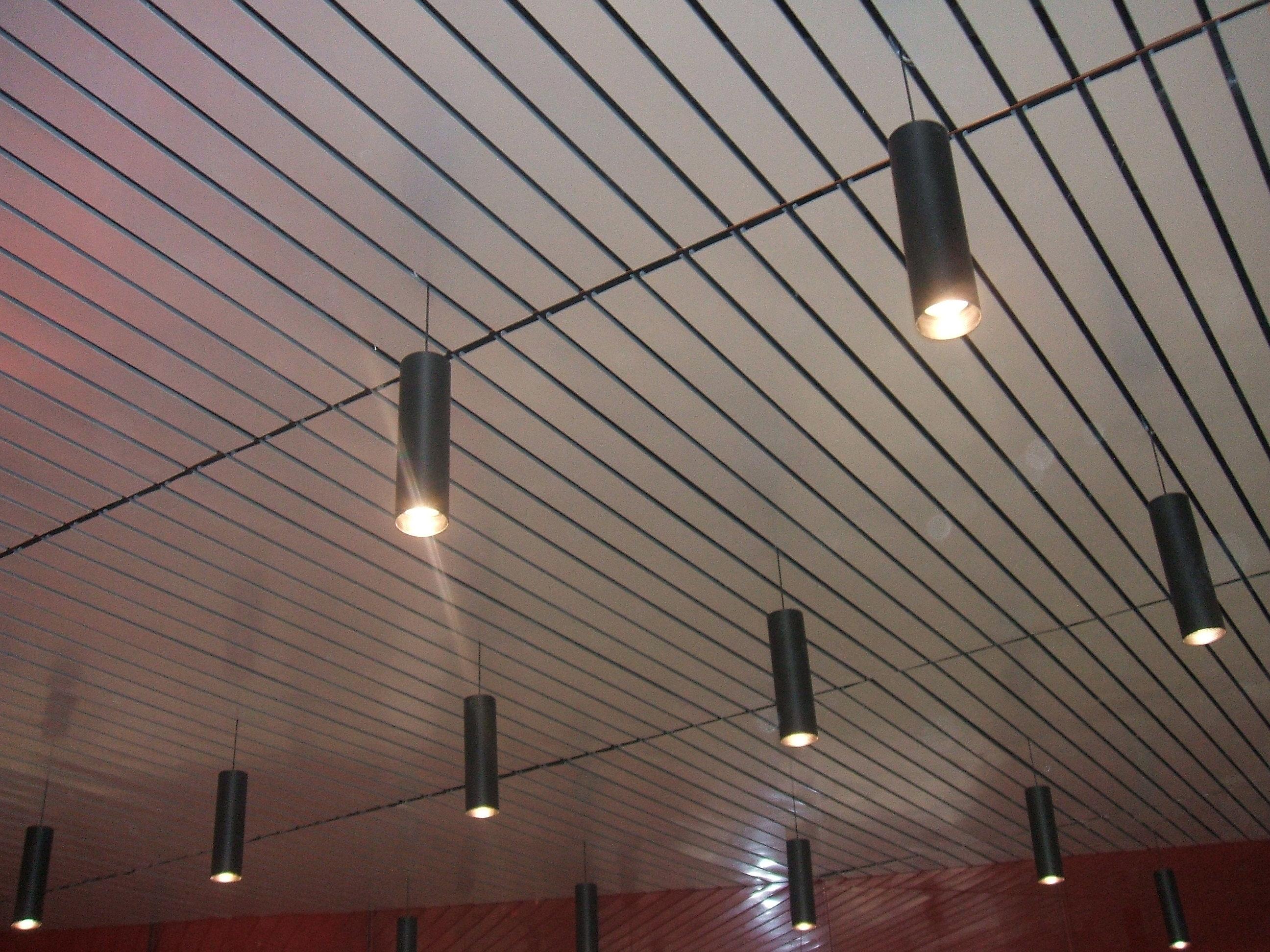 Iasa productos arquitect nicos y gabinetes para for Plafones de techo y pared